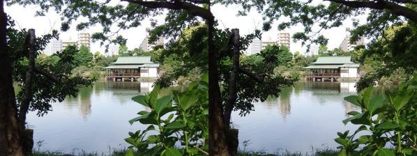 清澄庭園⑫(交差法)