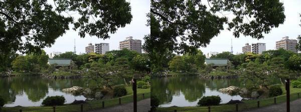 清澄庭園⑪(平行法)
