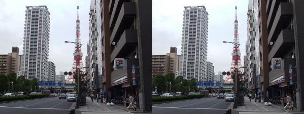 三田からの東京タワー(平行法)