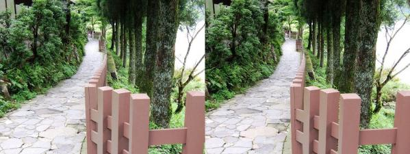 芦ノ湖畔道(交差法)