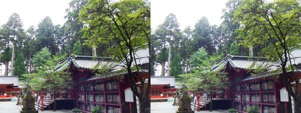 箱根神社④(平行法)