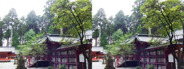 箱根神社④(交差法)