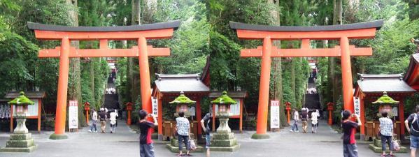 箱根神社①(交差法)