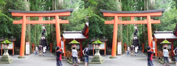 箱根神社①(平行法)