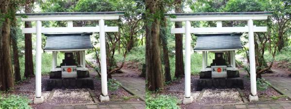 白龍神社(平行法)