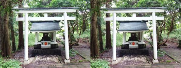 白龍神社(交差法)