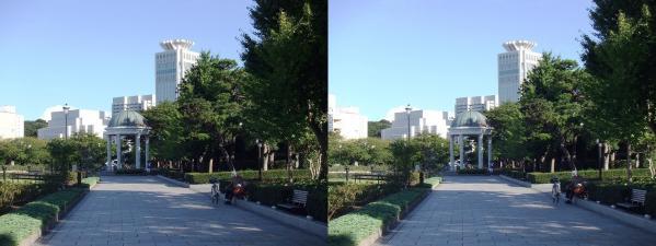 横須賀ヴェルーニ公園⑥(平行法)
