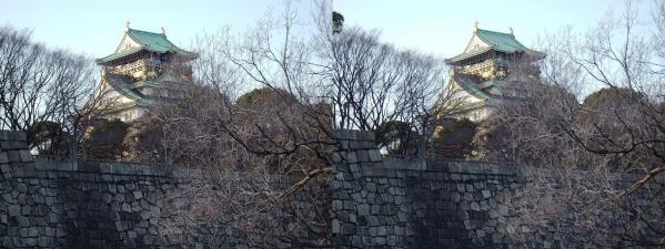 大阪城⑦(平行法)