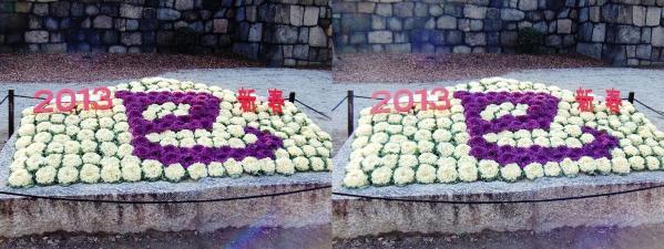 2013新春巳年(平行法)