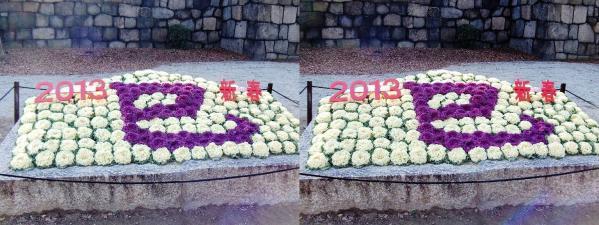 2013新春巳年(交差法)