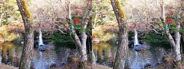円山公園 瓢箪池(平行法)