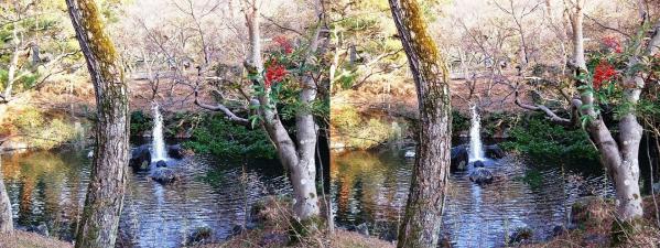 円山公園 瓢箪池(交差法)