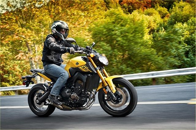2015fz09 yellow12