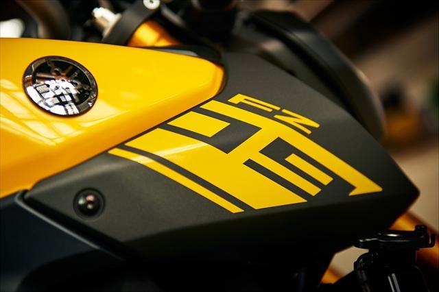 2015fz09 yellow14