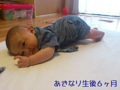 DSC_3396_20120523210854.jpg