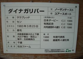 541_R.jpg