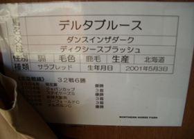 543_R.jpg