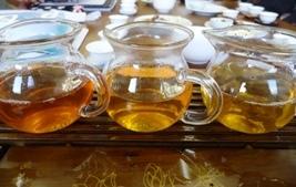 プーアル生茶飲み比べ
