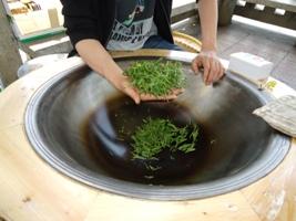龍井茶作り