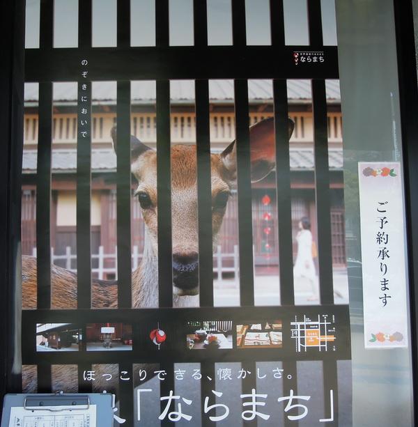 10-Nara- 11