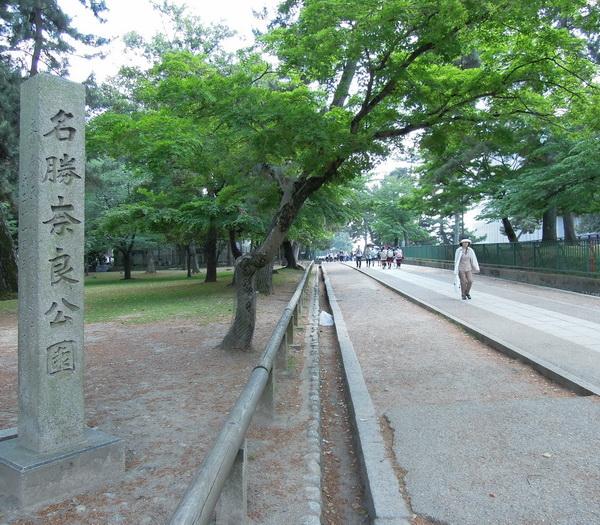 10-Nara- 14