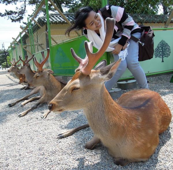 08-Nara- 10