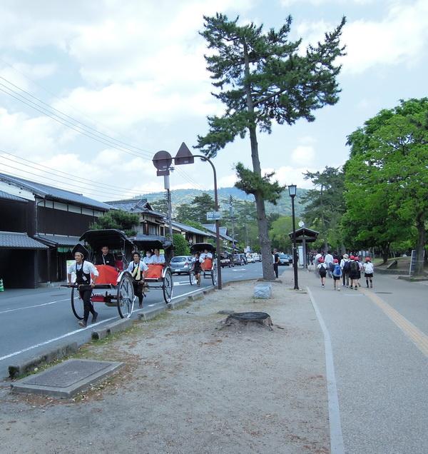 07-Nara- 04