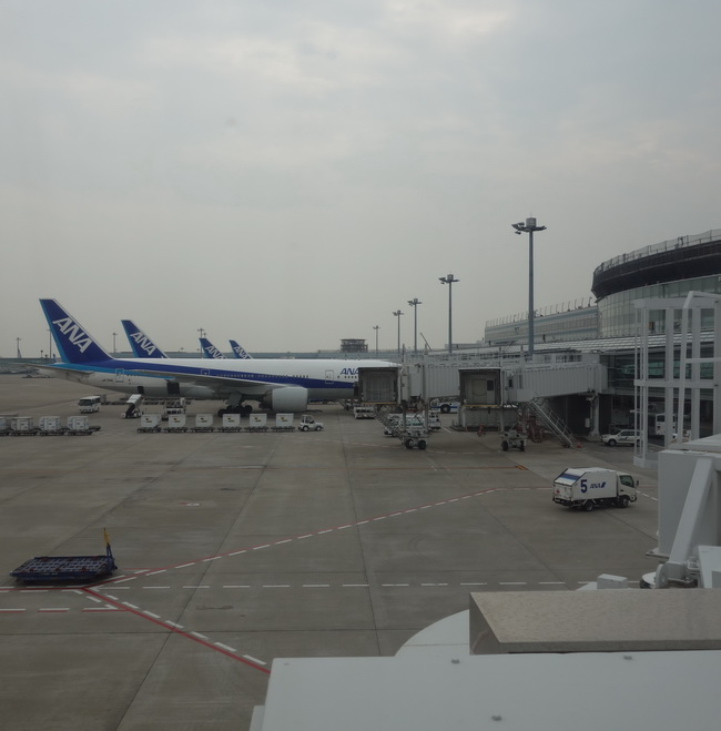 1W-fukuoka 004
