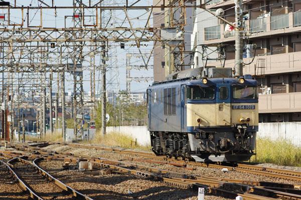 131215hamakawasaki5160.jpg