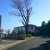 s-site武藤邸敷地写真 056