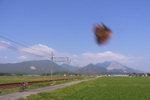 20120629_03.jpg