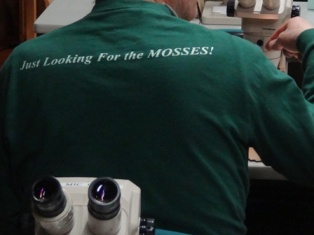 Just looking for the mosses2
