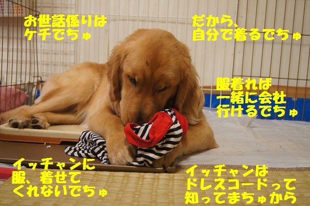 0003_20120616203814.jpg