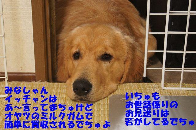 0007_20120616203829.jpg