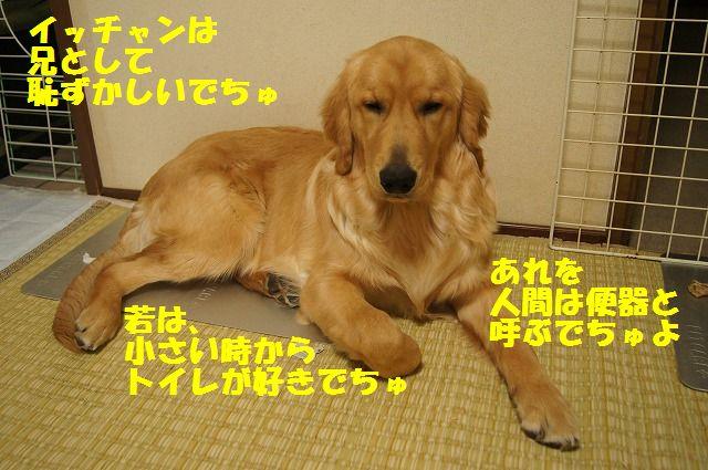 002_20120512233443.jpg