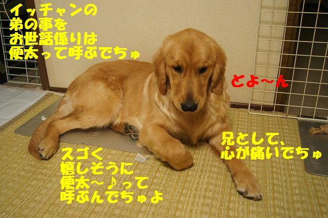003_20120512233442.jpg
