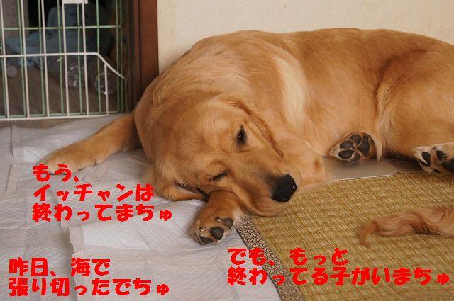 01_20120511101916.jpg