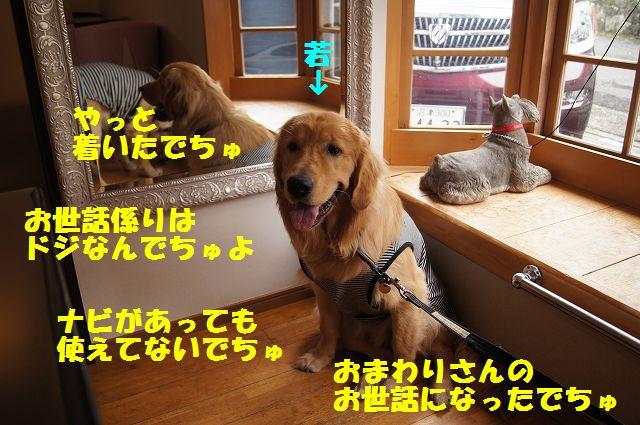 01_20120701203043.jpg