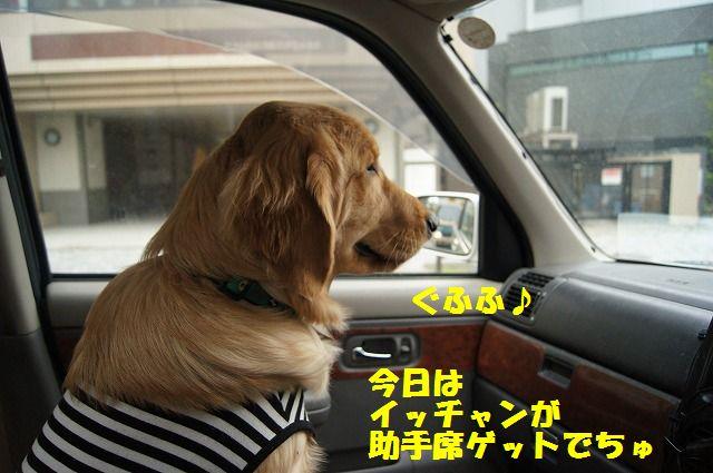 04_20120511101913.jpg