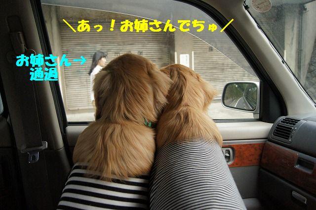 05_20120511101912.jpg