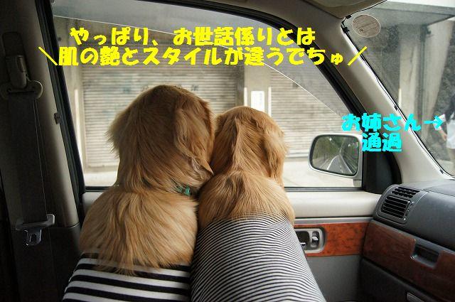 06_20120511101911.jpg