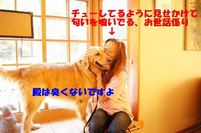 06_20120701203041.jpg