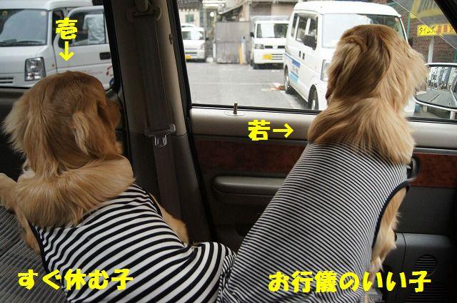 07_20120511103800.jpg