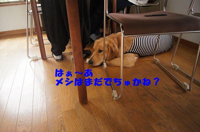 07_20120626093100.jpg