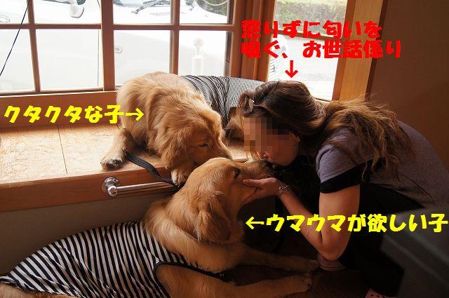 07_20120701203102.jpg