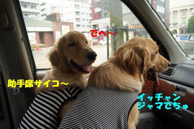 09_20120511101948.jpg