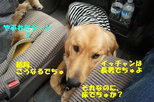 10_20120511101947.jpg