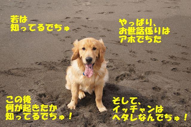 10_20120607234038.jpg