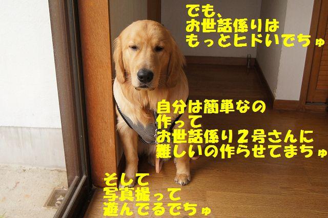 10_20120626095149.jpg