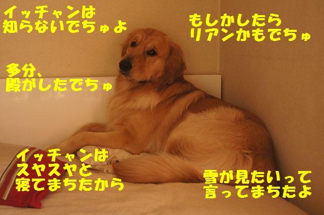10_20130103172121.jpg